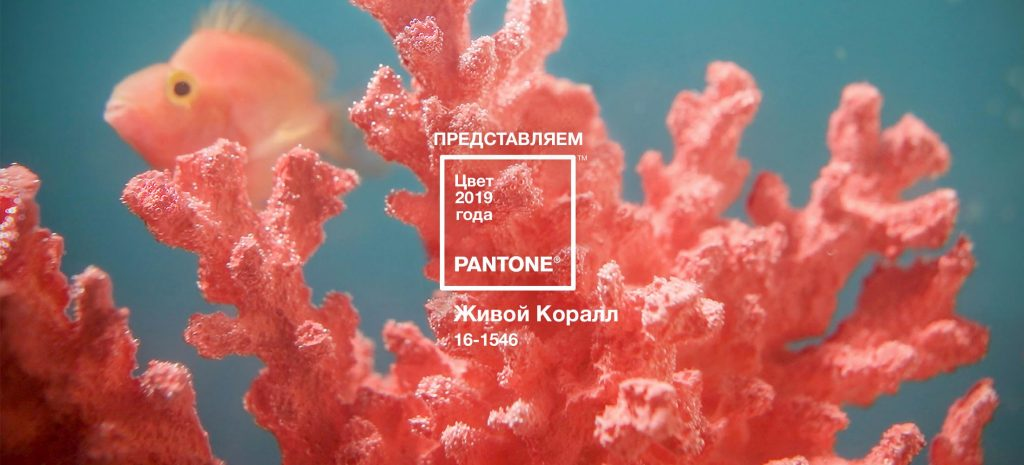 Pantone The Living Coral